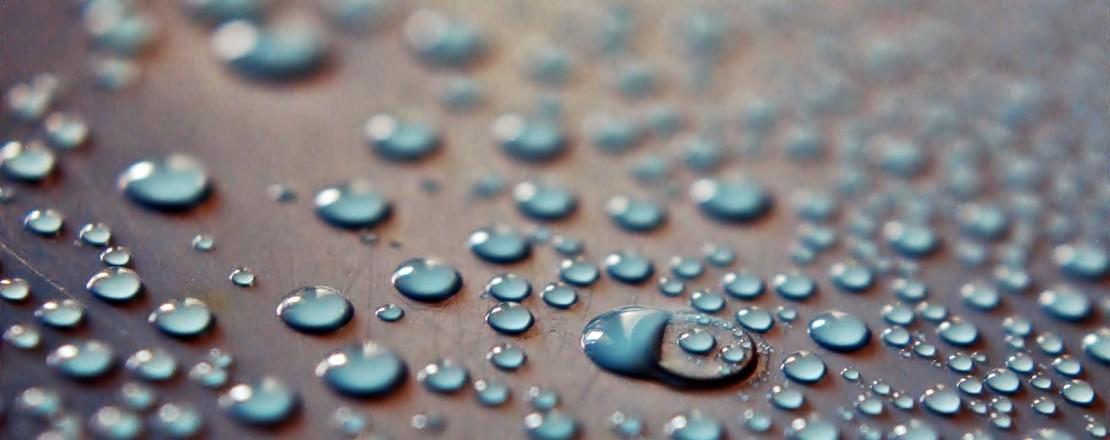 dew-rain-raindrops-drops-of-water